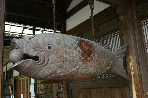 Mõ nguyên bản hình con cá tại một ngôi chùa ở Uji, Nhật.