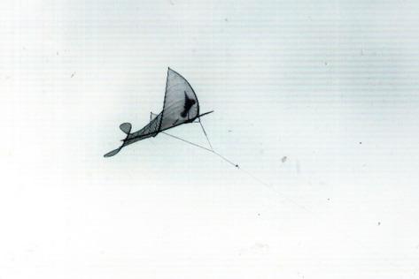 saodieu_Cánh diều mang theo những ước mơ và khát khao của người dân Đại Trà về một mùa bội thu.