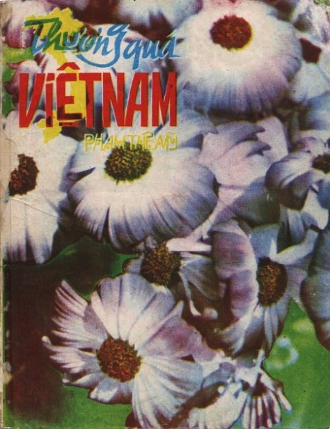 phamthemy_Thương Quá Việt Nam