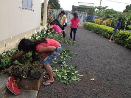 2/ Ảnh các em chăm sóc giàn hoa treo trước nhà Lưu trú.