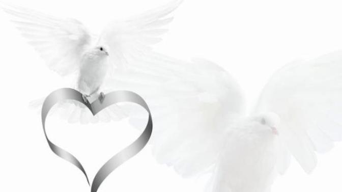 A Pure heart – Trái tim tinh khiết