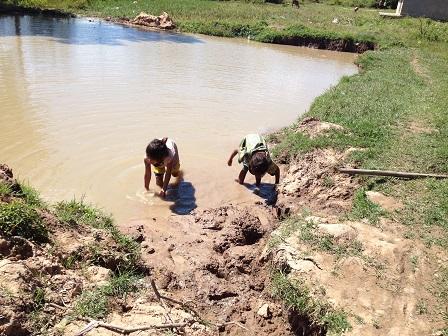 1/ Ảnh hai người con nhỏ của bố mẹ Dân ở thôn Năm đang chơi nước dưới ao lớn trước nhà.