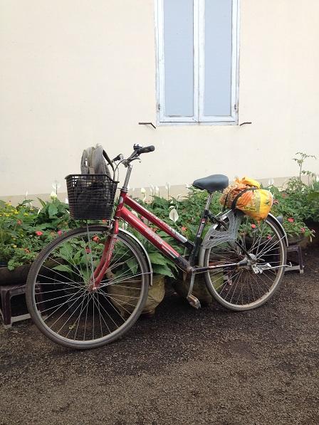 Ảnh chiếc xe đạp của em Sẻ học sinh lớp Mười Lưu trú, chở gạo mới ra cho nhà Lưu trú.
