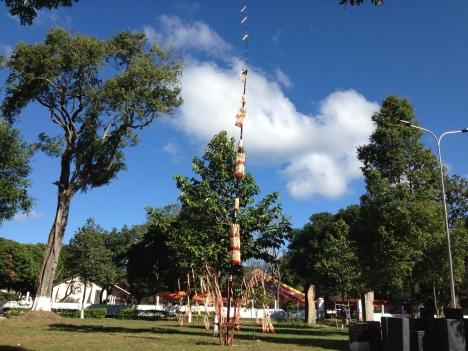 2/ Ảnh cây nêu cao 20 mét của người sắc tộc Bana trong sân Tòa Giám mục Kontum trong ngày lễ Tấn phong Giám mục Kontum 2015.