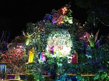 Hang đá nhà thờ Duy Linh _ Bmt (2)