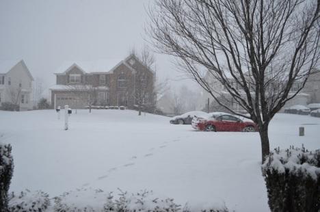 Tuyết bắt đầu rơi, chiều thứ sáu, Jan. 23, 2016. Trước hiên nhà, mấy căn nhà trước mặt là nhà hàng xóm, chiếc xe đỏ là xe của mình đậu ngoài đường.
