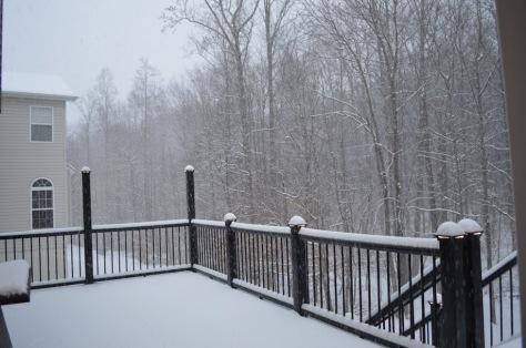 """Chiều thứ bảy,  Jan. 24, 2016.  Sân nổi sau nhà.  """"Sân nổi"""" là một sàn gỗ cao như một sân nhỏ, gọi là deck and porch."""