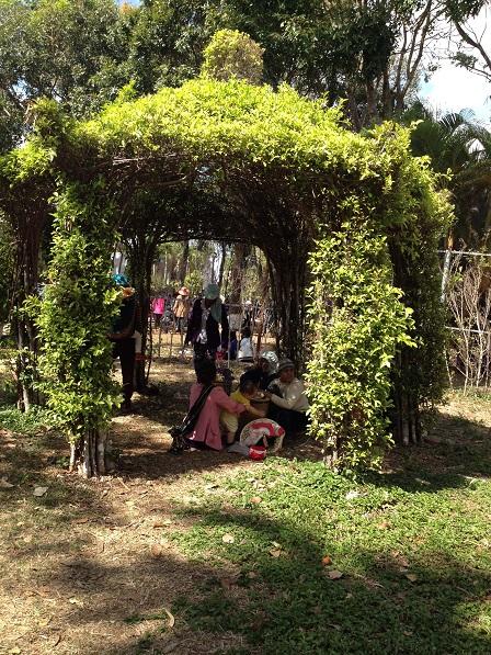 6/ Ảnh các gia đình sắc tộc Jarai ngồi trong những bóng mát của vòm cây trong công viên Đồng Xanhngày Mồng một Tết Bính Thân 2016