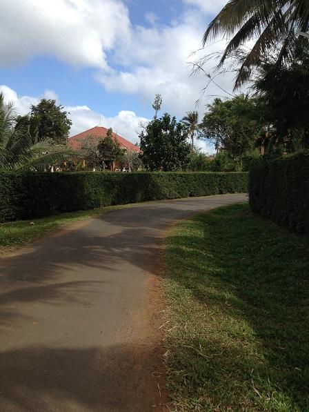1/ Ảnh con đường từ phía ngoài dẫn vào Tu viện NVHB _ Bmt.