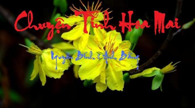 """Tân Nhạc VN – Thơ Phổ Nhạc – """"Chuyện Tình Hoa Mai"""", """"Bướm Trắng"""" – Nguyễn Bính & Anh Bằng"""