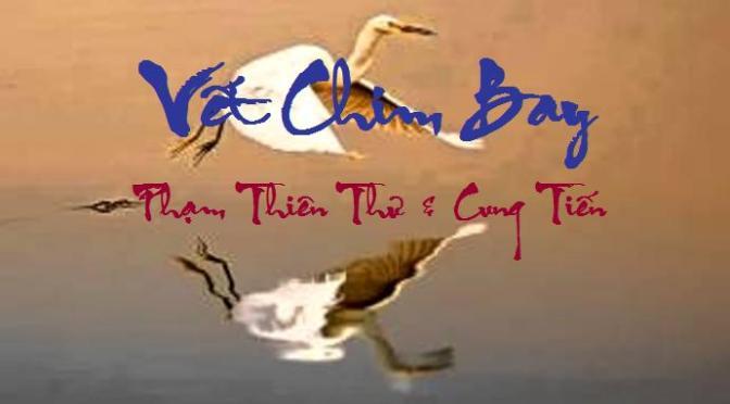 """Tân Nhạc VN – Thơ Phổ Nhạc – """"Vết Chim Bay"""" – Phạm Thiên Thư & Cung Tiến"""