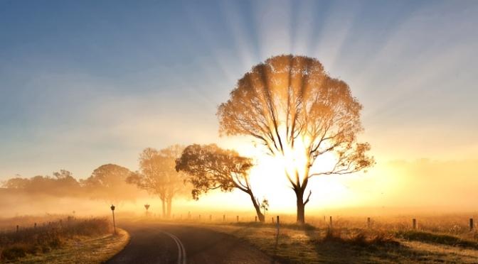 Trí thức cần hiểu rành đời sống tâm linh