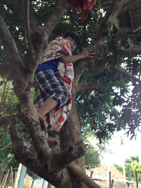 1/ Ảnh em Thăl người sắc tộc Bana quàng theo cái mền trèo lên cây để ngủ. Cây này mọc sát nhà bếp củanhà xứ Konđúp Kontum.