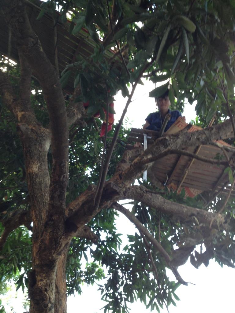 3/ Ảnh trên cây có hai tấm liếp giường là chỗ ngủ của em Thăl và em Đel học sinh lớp Mười.
