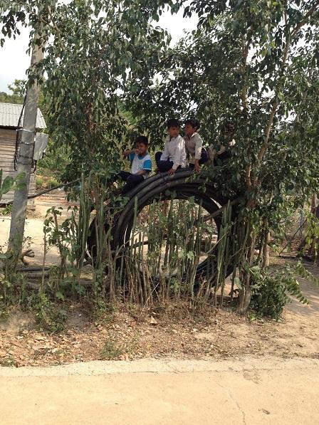 3/ Ảnh bốn em cùng ngồi chơi trên cuộn dây tưới cà-phê của bố mẹ Kali.