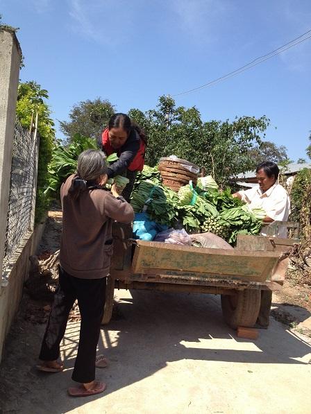 Ảnh bố Thiếu, mẹ E và mẹ Hreng giúp các Yăh chở rau qua cho bên xóm Đào