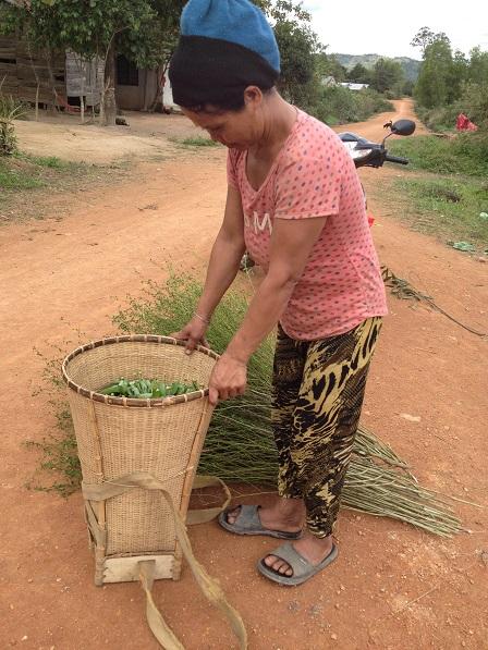 2/ Ảnh mẹ Nghi lên nương rãy tranh thủ hái rau rừng và chặt cây về bó chổi.