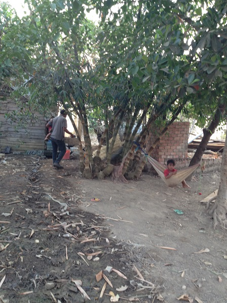 Bụi cây sau nhà của bố mẹ Niel bên xóm Đào