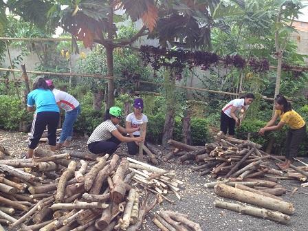 1/ Các em nữ học sinh Lưu trú lớp 12 chặt củi trong giờ lao động.