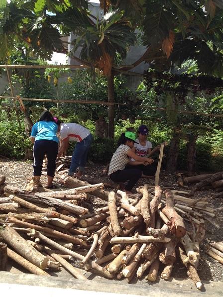 2/ Các em chặt củi dưới bóng cây Sakê trước nhà Lưu trú