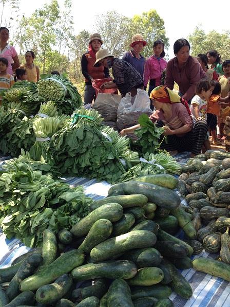 2/ Ảnh các Yăh nhờ các mẹ sắp xếp theo từng loại rau quả, để đến lúc chia cho anh em xóm Đào được dễdàng nhanh chóng.