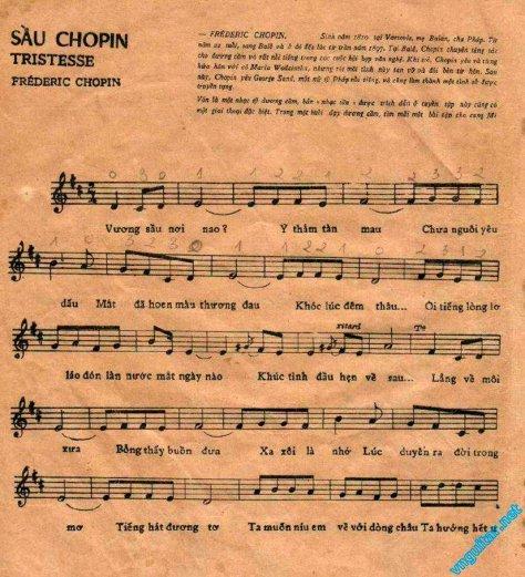 chopin_Sầu Chopin1