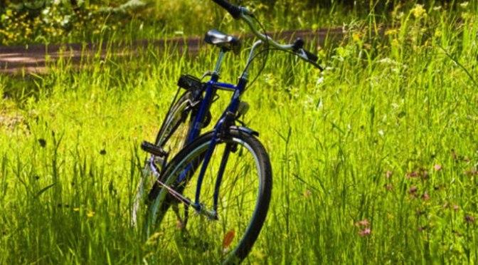 Cho chiếc xe đạp