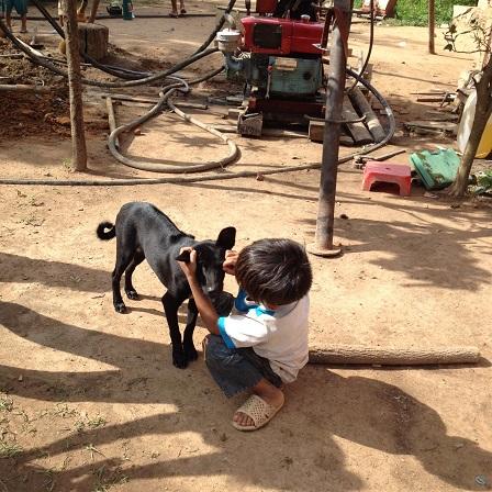 Em Hiển đang bắt bọ chét cho chó bên máy khoan giếng