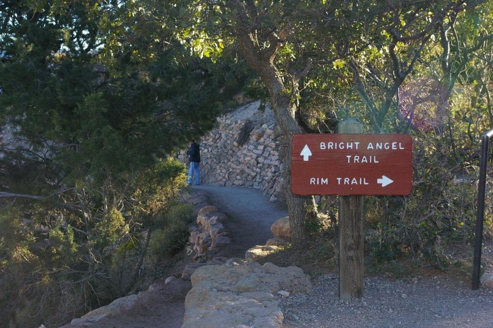 Ngã rẽ lên Bright Angel Point.