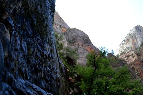 Nước rịn ra tự nhiên trên vách đá.