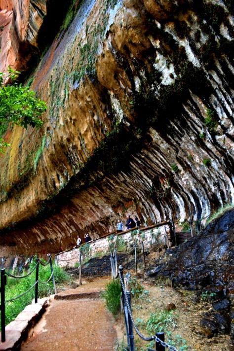 Life on The Vertical. Nước chảy ra tự nhiên từ trong đá.