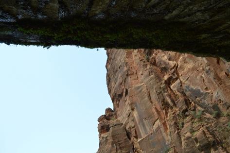 Chính giữa Life on The Vertical nhìn lên.