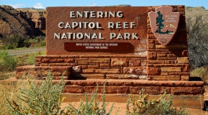 """ẢNH SINH HOẠT HẰNG NGÀY – Từ Đông sang Tây – Công Viên Quốc Gia """"Capitol Reef National Park"""""""