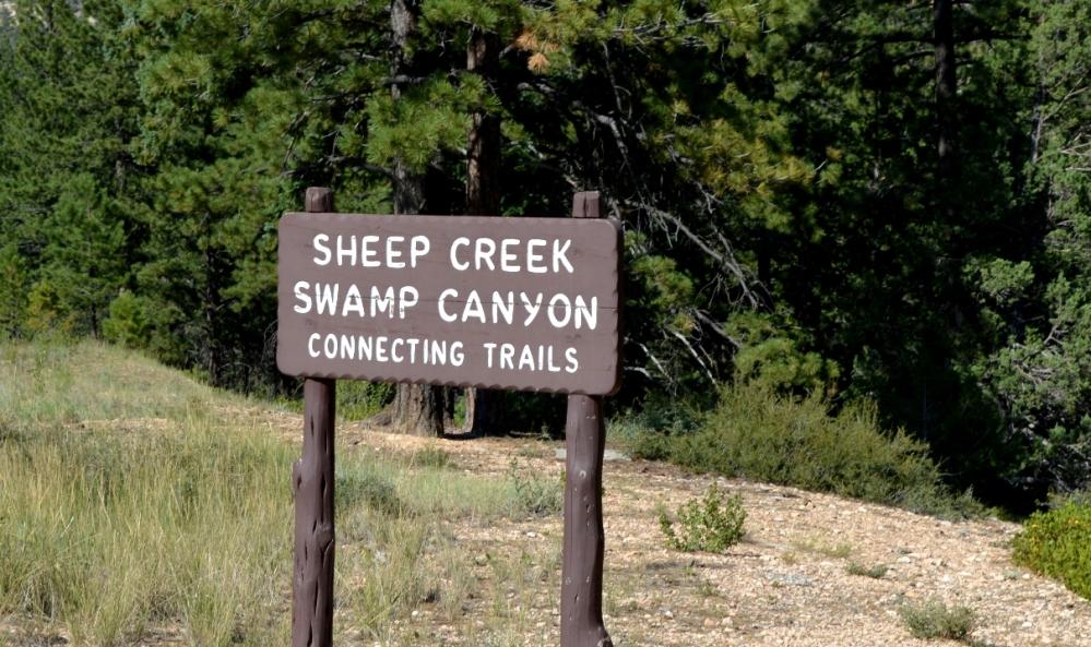 Khu vực Sheep Creek Swamp Canyon.