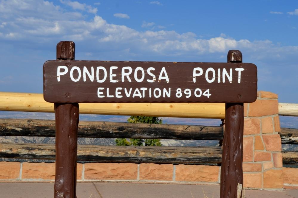 Khu vực Ponderosa Point.