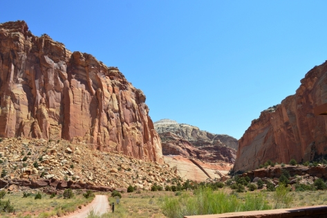 Con đường dành cho những người hikers đi khám phá công viên.