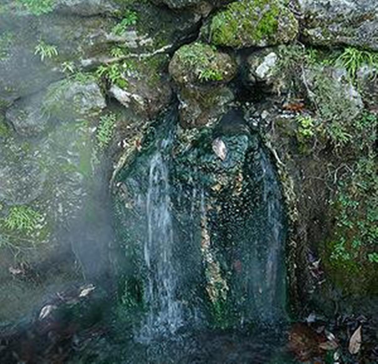 hot springs national park single girls Married but looking for affairs in hot springs national park, arkansas if you are looking to meet married women or men in hot springs national park.
