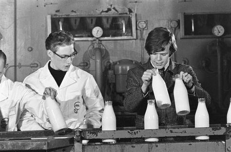 Herman (Peter Noone) trong một nhà máy chế biến sữa của   Dutch (1966).