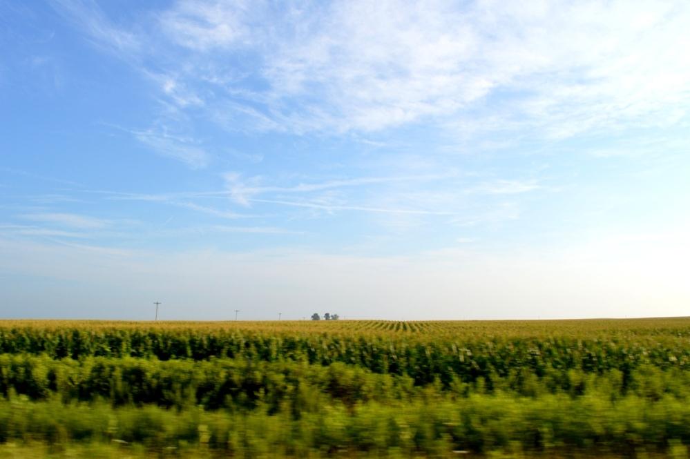 Bạt ngàn cánh đồng bắp bên phải xa lộ cao tốc I-70W.