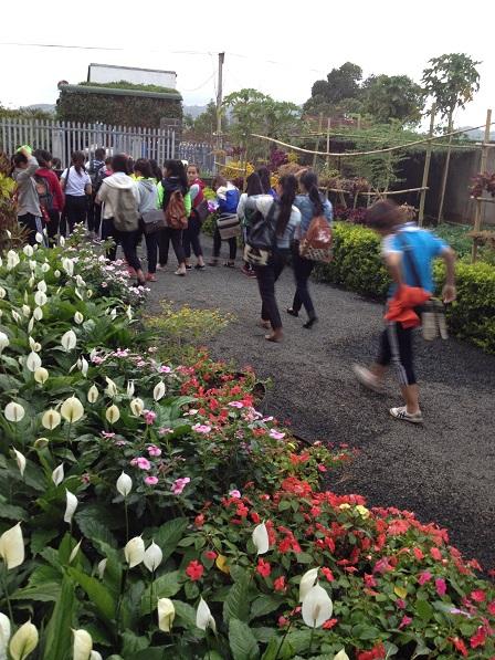 Các em nữ học sinh cấp III Lưu trú sắc tộc trên đường đi học.