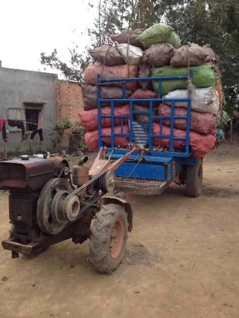 1/ Ảnh xe công nông củ mì khô của gia đình bố mẹ Thiên ở thôn Tư.