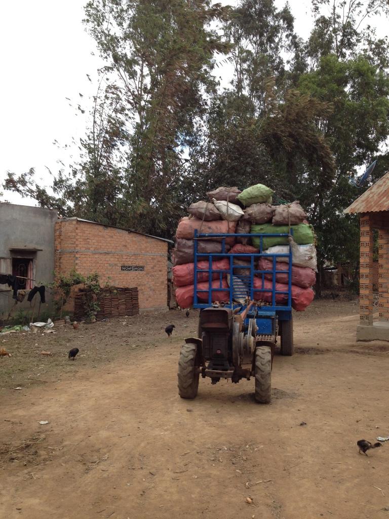 2/ Ảnh xe công nông củ mì khô chuẩn bị đến bán cho quán người Kinh trong Buôn Làng.