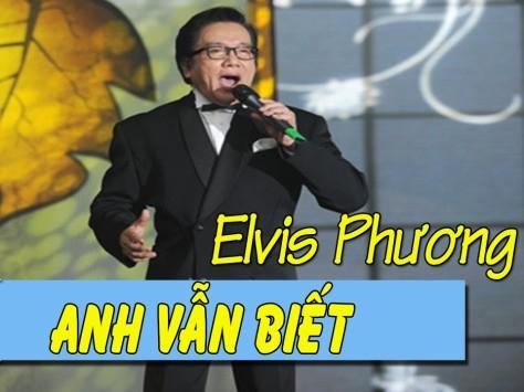 anhvanbiet_elvis-phuong