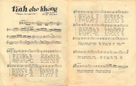 tinhchokhong_viet