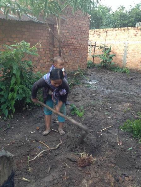 2/ Mẹ E cuốc lỗ trồng cỏ để nuôi bò.