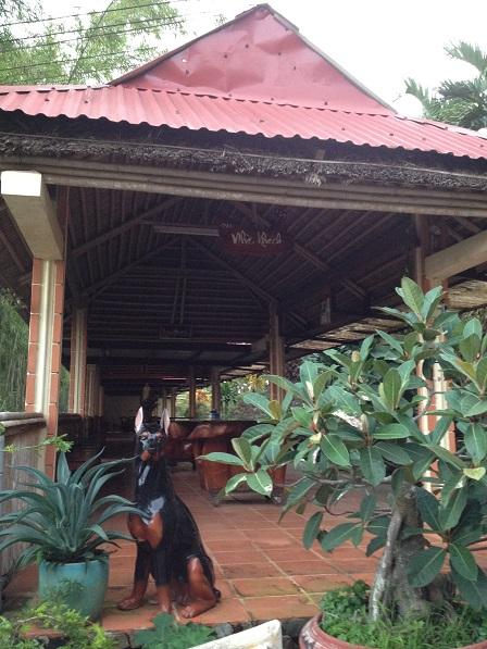 2/ Nhà khách Đan viện Thiên Hòa Gp. Bmt là một dãy nhà dài chung quanh làm bằng cây tre, phía trong đặt 10 bộ bàn ghế gỗ.