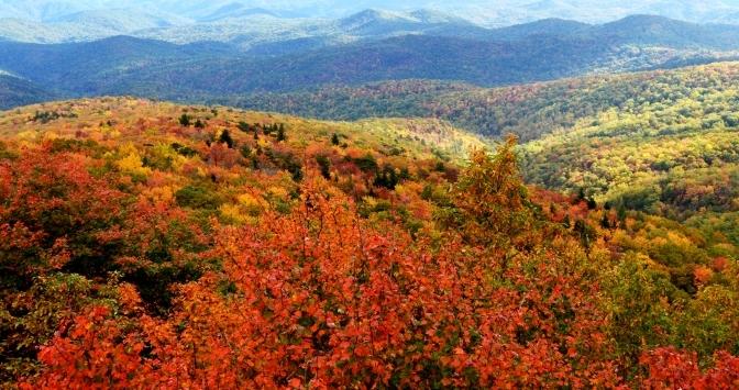 Sắc Thu Trên Dãy Appalachian 2016 – Shenandoah National Park – Skyline Drive
