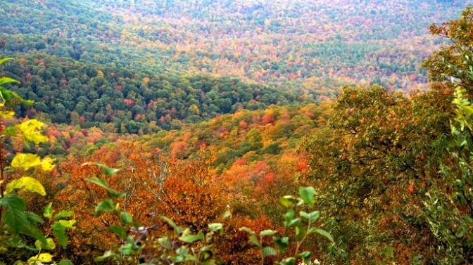 Sắc Thu Trên Dãy Appalachian 2016 – Blue Ridge Parkway – Phần 1