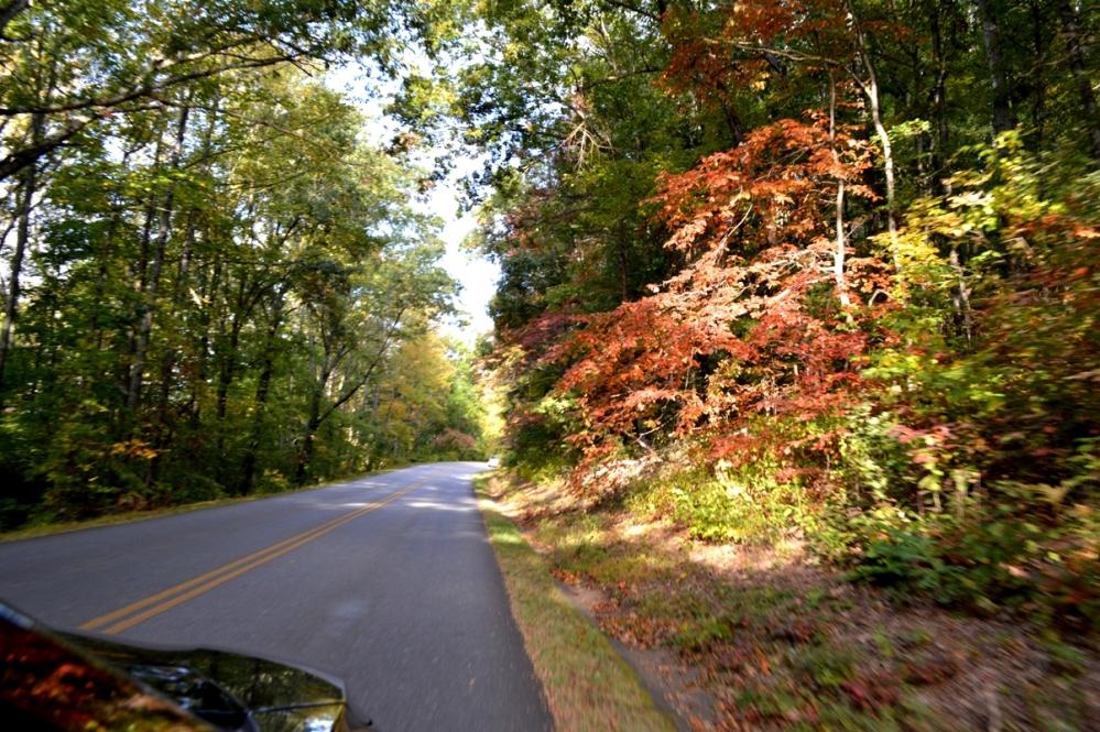 Đường lên Blue Ridge Parkway.