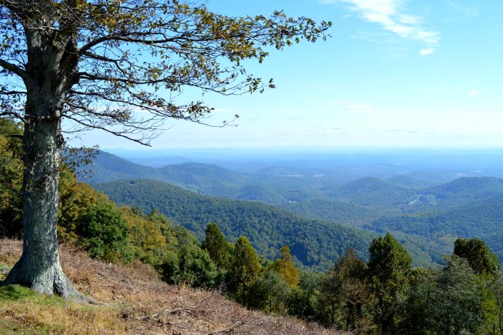 Roanoke Mountains - nhìn bên trái.